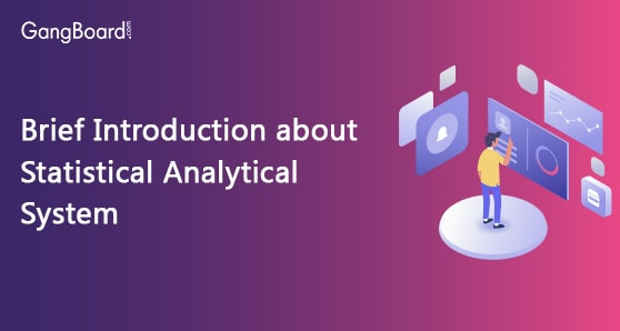 Brief Introduction about Statistical Analytical System
