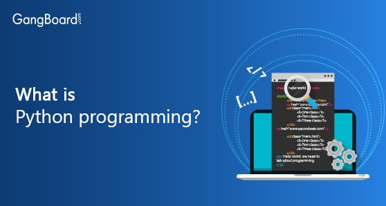 What is Python programming?