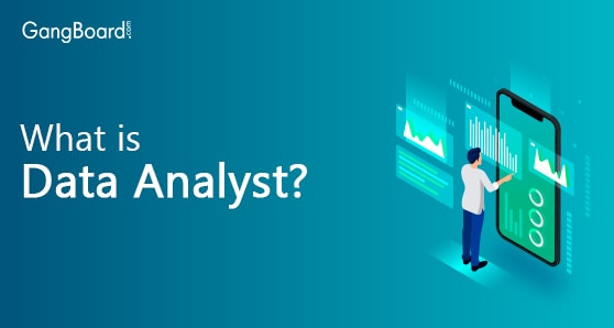 What is Data Analyst