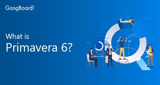 What is Primavera p6