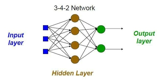 Hidden Layer Network