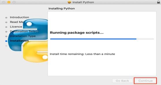 Running Package Script