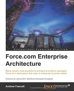 Saesforce.com enterprise architecture