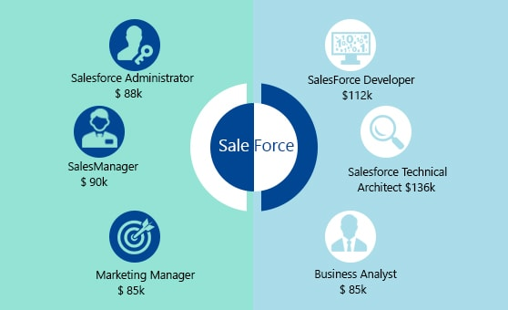 Usual wage of salesforce professionals