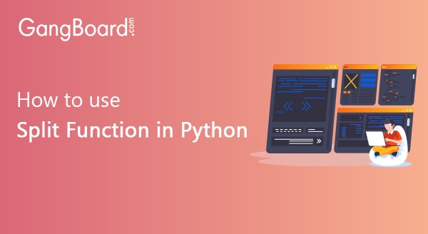 How to use Split Function in Python